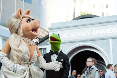 The Muppets Preview: A Pig And A Frog On The Red Carpet!
