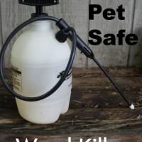 DIY Pet Safe Weed Killer