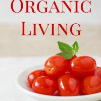 Why We Switched To Organic Living