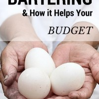 Bartering For Goods & Services To Stretch Your Budget (Day 30) #SpendingFreezeDFS