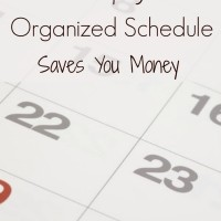 Why An Organized Schedule Keeps You Within Your Budget (Day 19) #SpendingFreezeDFS