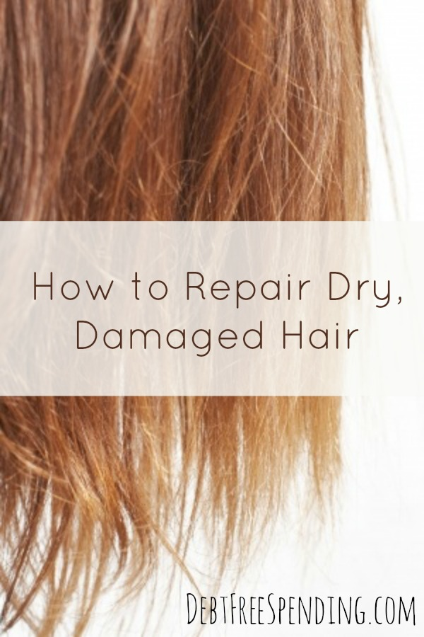 How To Repair Your Damaged Hair Debt Free Spending