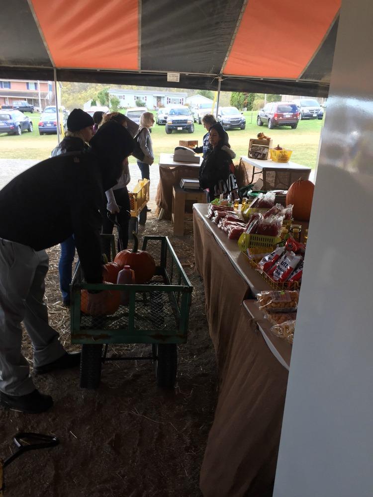 reynolds-farm-tent